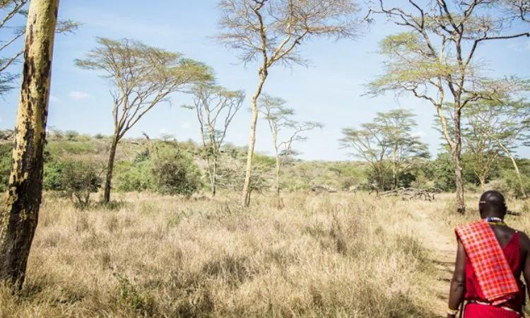 Cristãos no Quênia enfrentam perseguição de extremistas e são ignorados pelos governantes